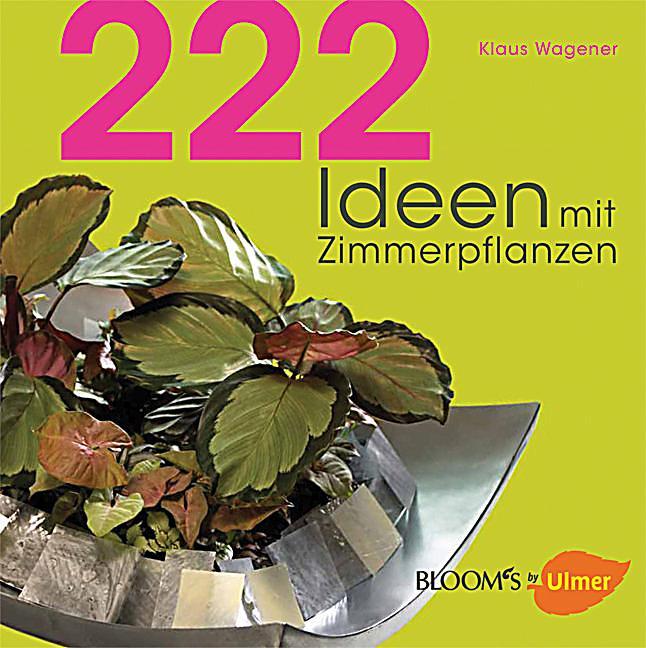 Redirecting to artikel buch 222 ideen mit zimmerpflanzen for Zimmerpflanzen bestellen