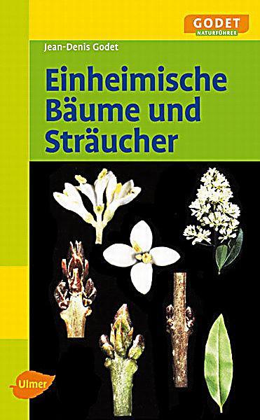 redirecting to artikel buch einheimische baeume und. Black Bedroom Furniture Sets. Home Design Ideas