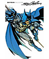 Batman Collection: Neal Adams