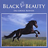 Black Beauty - Das Grosse Rennen, Audio-CD