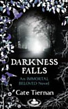 Darkness Falls (eBook)