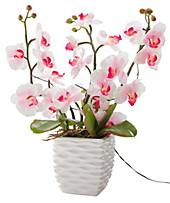Deko-Orchidee mit LEDs