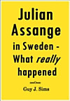 Julian Assange in Sweden (eBook)