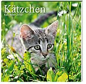 "Kalender ""Kätzchen"" 2015 - Broschur"