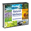 Natural Wellness - Instrumentalmusik