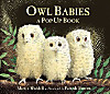 Owl Babies Pop Up