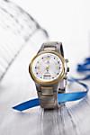 Quality Time SolarDrive Funk-Armbanduhr Titan-Bicolor (Ausführung: Herren)