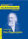 Storm. Pole Poppenspäler (eBook)