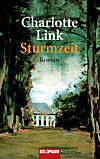 Sturmzeit (eBook)